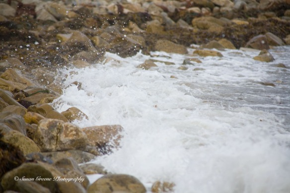 tidepools, wave