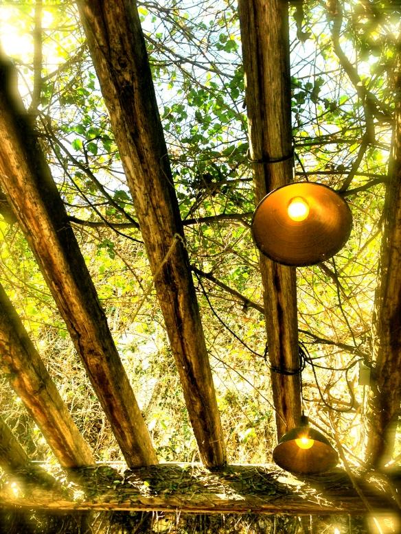 Light and lattice