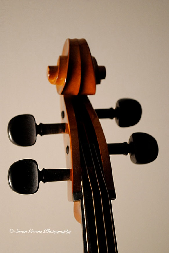 cello scroll and pegs