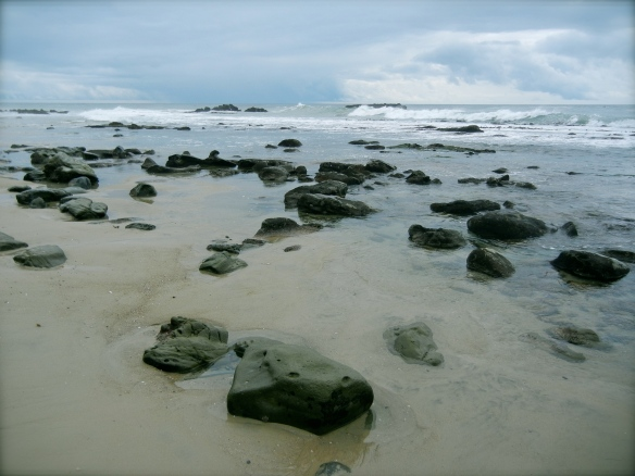 low tide rocks